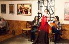 Flamenco show Malaga