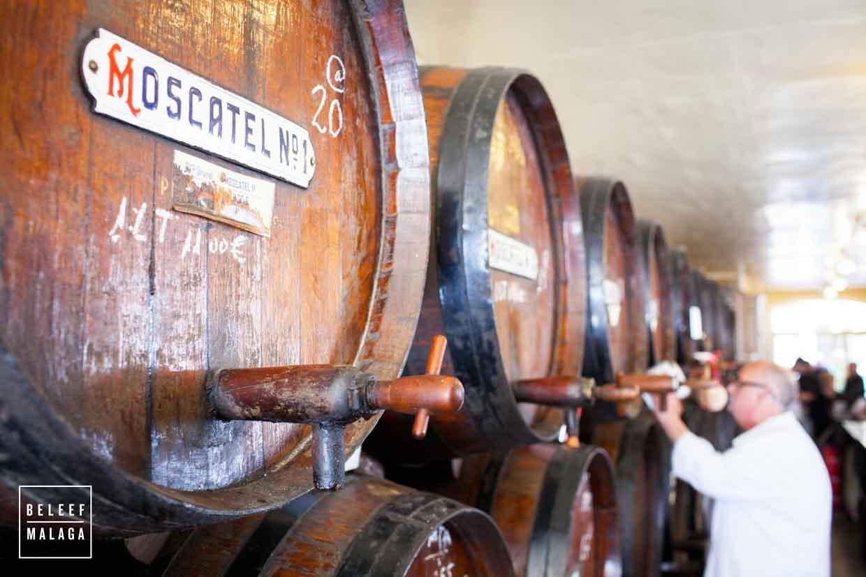 Bodega Bar Malaga stedentrip