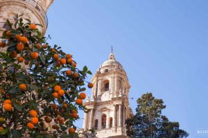 Kathedraal Málaga