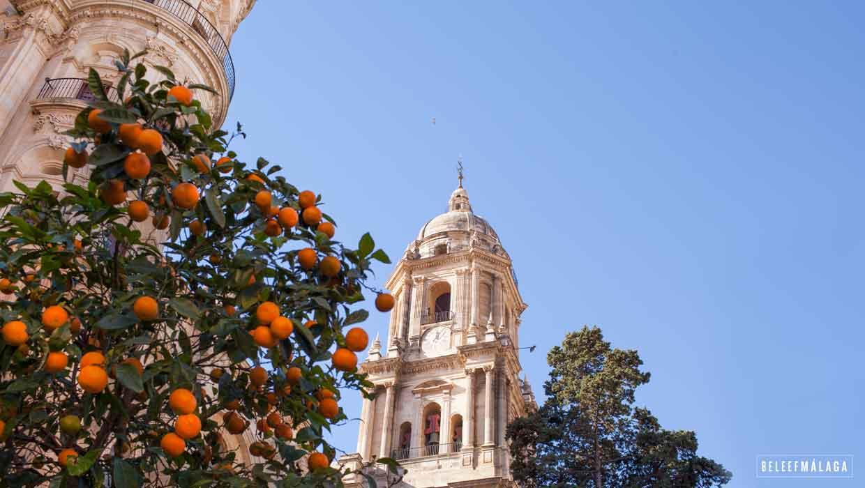 Kathedraal Malaga Ontdek Bezienswaardigheden In Malaga