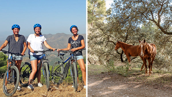 Mountainbike Malaga Andalusie