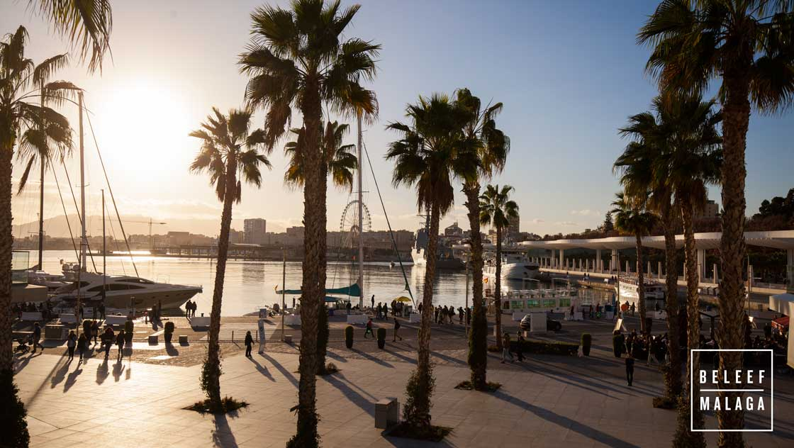 Haven Malaga - ontdek malaga