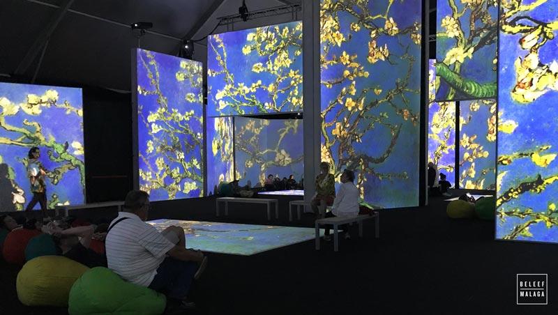 Expositie Van Gogh Alive