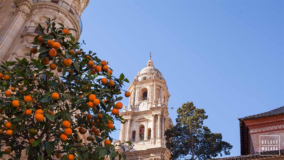 Malaga winter - citytrip Malaga